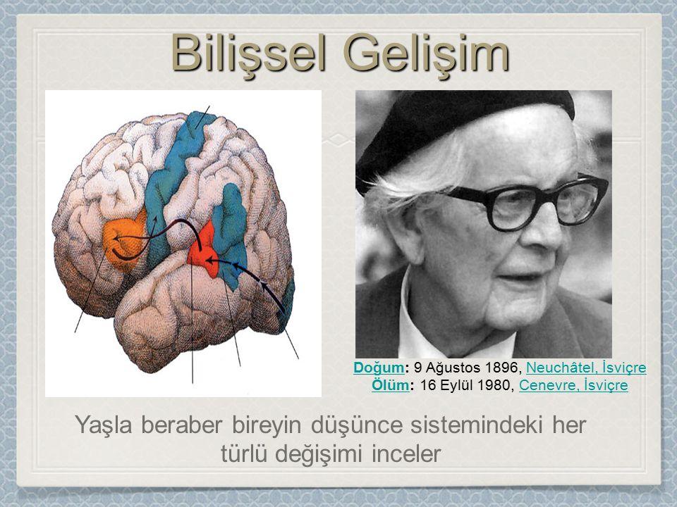 1-Olgunlaşma1-Olgunlaşma İnsan organlarının özellikle beyin ve sinir sisteminin gelişmesidir.