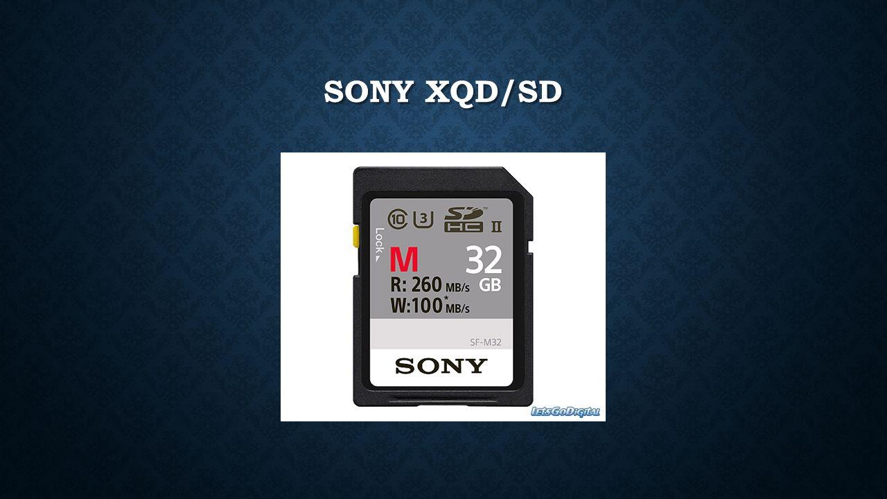 SONY XQD/SD