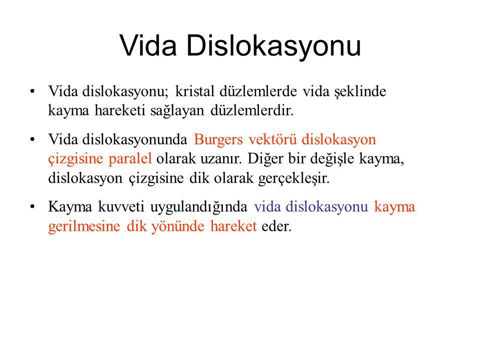 Vida Dislokasyonu Vida dislokasyonu; kristal düzlemlerde vida şeklinde kayma hareketi sağlayan düzlemlerdir. Vida dislokasyonunda Burgers vektörü disl