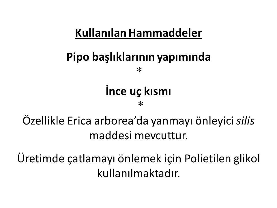 Kullanılan Hammaddeler Pipo başlıklarının yapımında * İnce uç kısmı * Özellikle Erica arborea'da yanmayı önleyici silis maddesi mevcuttur. Üretimde ça