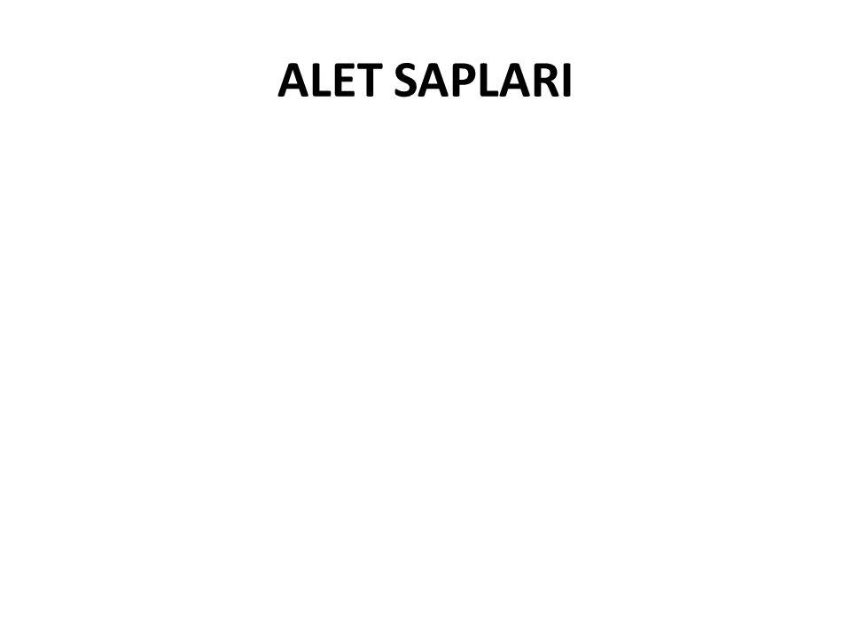 ALET SAPLARI