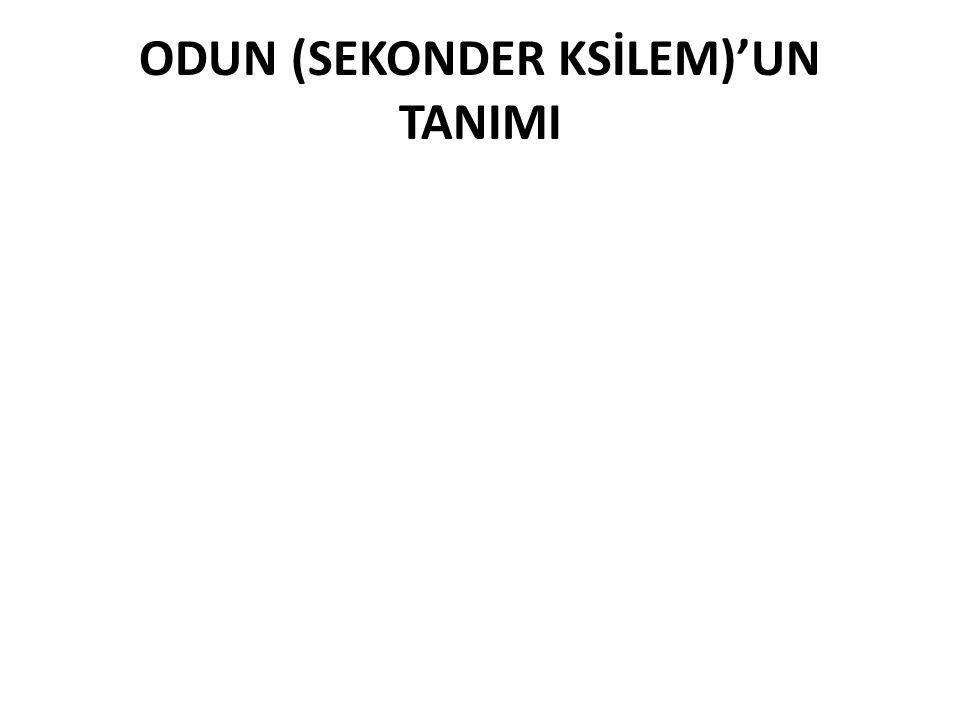 ODUN (SEKONDER KSİLEM)'UN TANIMI
