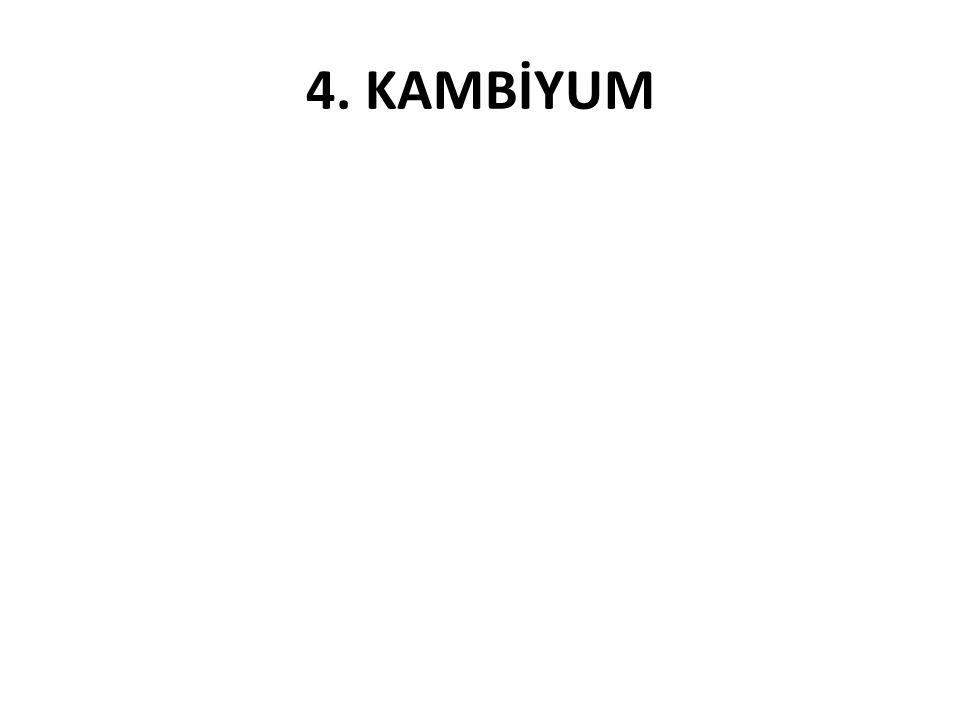 4. KAMBİYUM