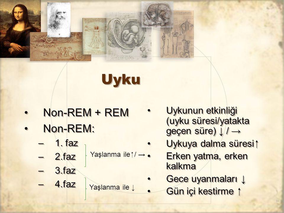 Uyku Non-REM + REM Non-REM: –1. faz –2.faz –3.faz –4.faz Non-REM + REM Non-REM: –1. faz –2.faz –3.faz –4.faz Uykunun etkinliği (uyku süresi/yatakta ge