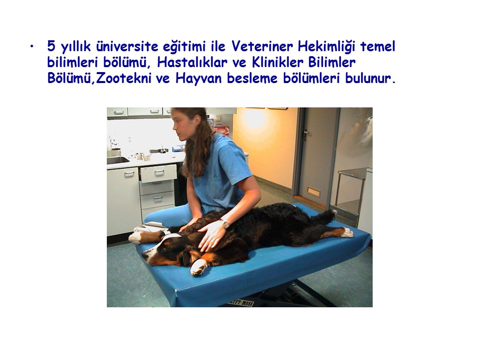 5 yıllık üniversite eğitimi ile Veteriner Hekimliği temel bilimleri bölümü, Hastalıklar ve Klinikler Bilimler Bölümü,Zootekni ve Hayvan besleme bölümleri bulunur.