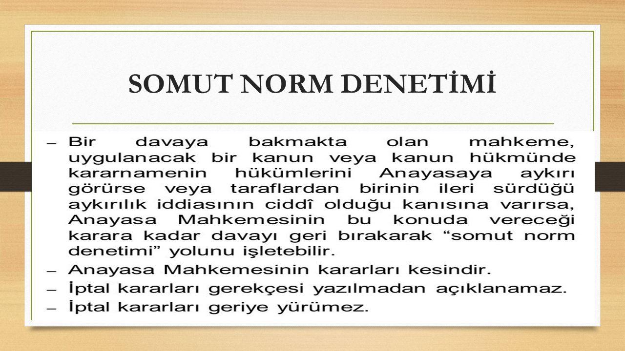 SOMUT NORM DENETİMİ