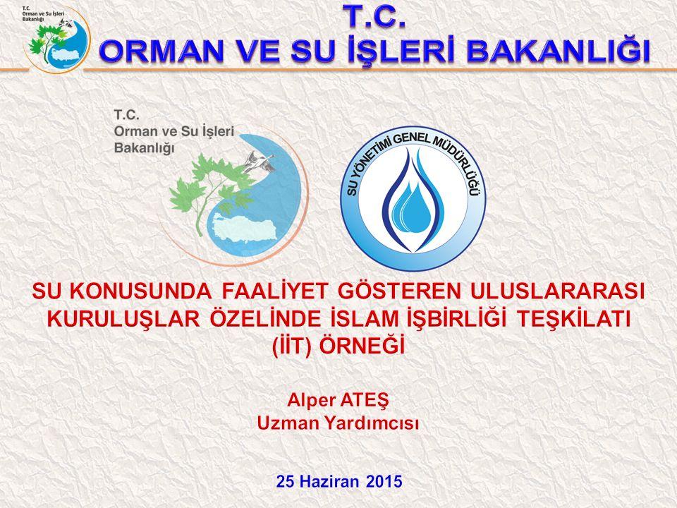 Su konusunda faaliyet gösteren uluslararası örgütlerin faaliyetlerinin incelenmesi ve ülkemizin de üyesi olduğu İslam İşbirliği Teşkilatı (İİT) su çalışmalarının detaylı irdelenerek öneriler geliştirmektir.