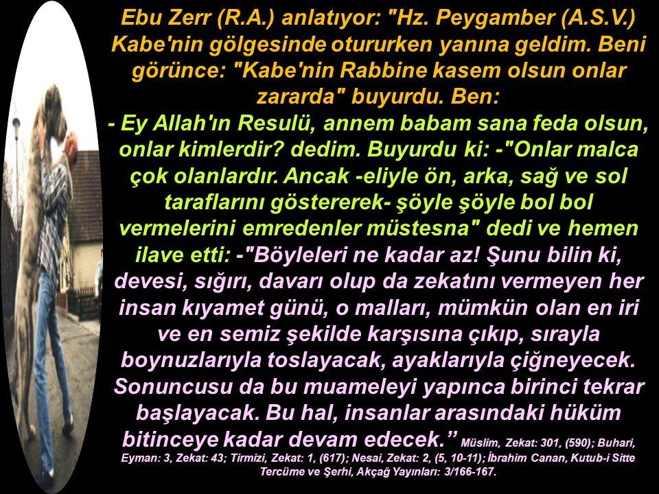 Ebu Zerr (R.A.) anlatıyor: Hz. Peygamber (A.S.V.) Kabe nin gölgesinde otururken yanına geldim.