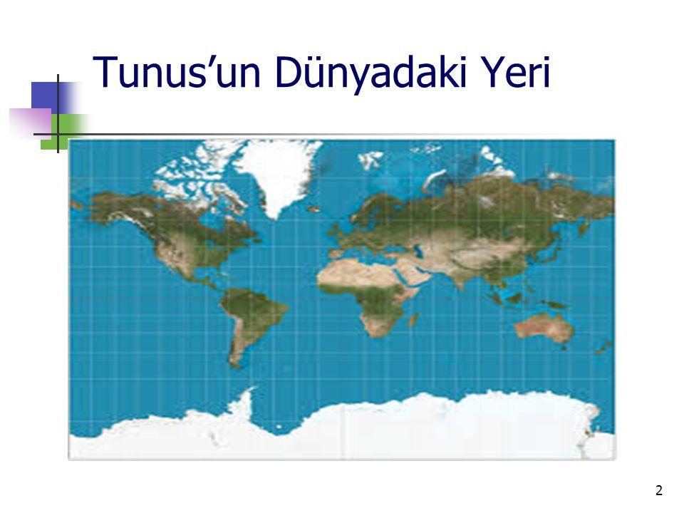 3 Temel Göstergeler Resmi AdıTunus Cumhuriyeti Yönetim BiçimiCumhuriyet Resmi Dili Arapça (Fransızca yaygın olarak kullanılmaktadır.) BaşkentTunus Yüzölçümü162.155 km 2 Nüfus (2014 tahmini)10,9 Milyon Etnik Yapı% 98 Arap, %1 Avrupalı, % 1 Diğer Dini Yapı%99 Müslüman, %1 Diğer Büyük KentlerTunus, Sfaks, Susa Para BirimiTunus Dinarı (TD) Türkiye ile Saat Farkı Nisan - Eylül Türkiye'den 2 saat geride Ekim -Mart Türkiye'den 1 saat geride Uluslararası Telefon Kodu+ 216