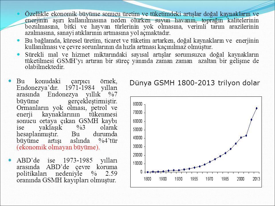 Özellikle ekonomik büyüme sonucu üretim ve tüketimdeki artışlar doğal kaynakların ve enerjinin aşırı kullanılmasına neden olurken suyun havanın, topra