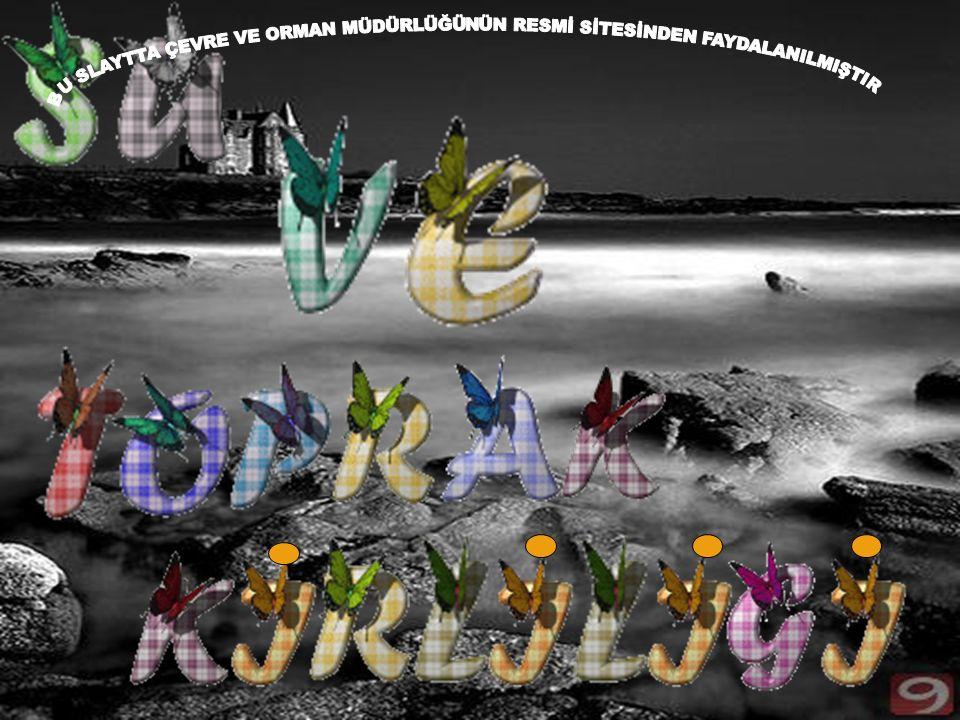 Marmara Denizi; özellikle Haliç ve İzmit Körfezi başta olmak üzere, fiziksel ve kimyasal kirleticilerin etkisinde kalmıştır.