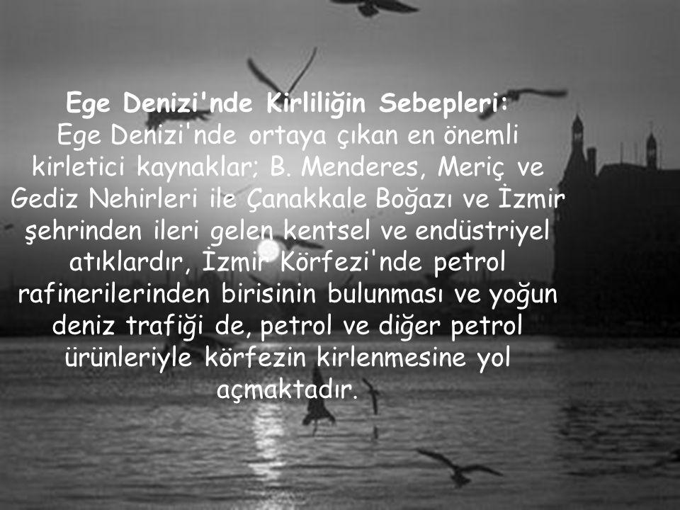 Ege Denizi'nde Kirliliğin Sebepleri: Ege Denizi'nde ortaya çıkan en önemli kirletici kaynaklar; B. Menderes, Meriç ve Gediz Nehirleri ile Çanakkale Bo