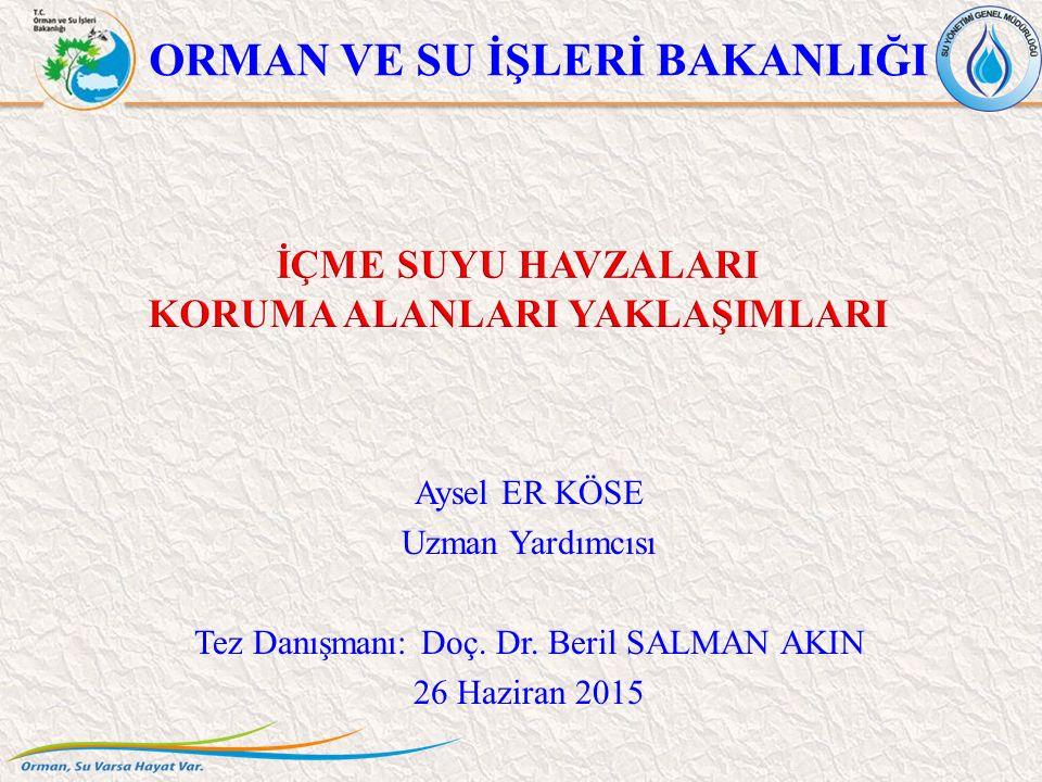 ORMAN VE SU İŞLERİ BAKANLIĞI Aysel ER KÖSE Uzman Yardımcısı Tez Danışmanı: Doç. Dr. Beril SALMAN AKIN 26 Haziran 2015