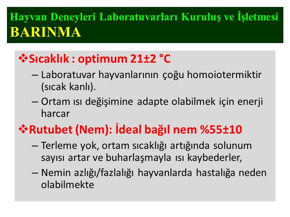  Sıcaklık : optimum 21±2 °C – Laboratuvar hayvanlarının çoğu homoiotermiktir (sıcak kanlı). – Ortam ısı değişimine adapte olabilmek için enerji harca