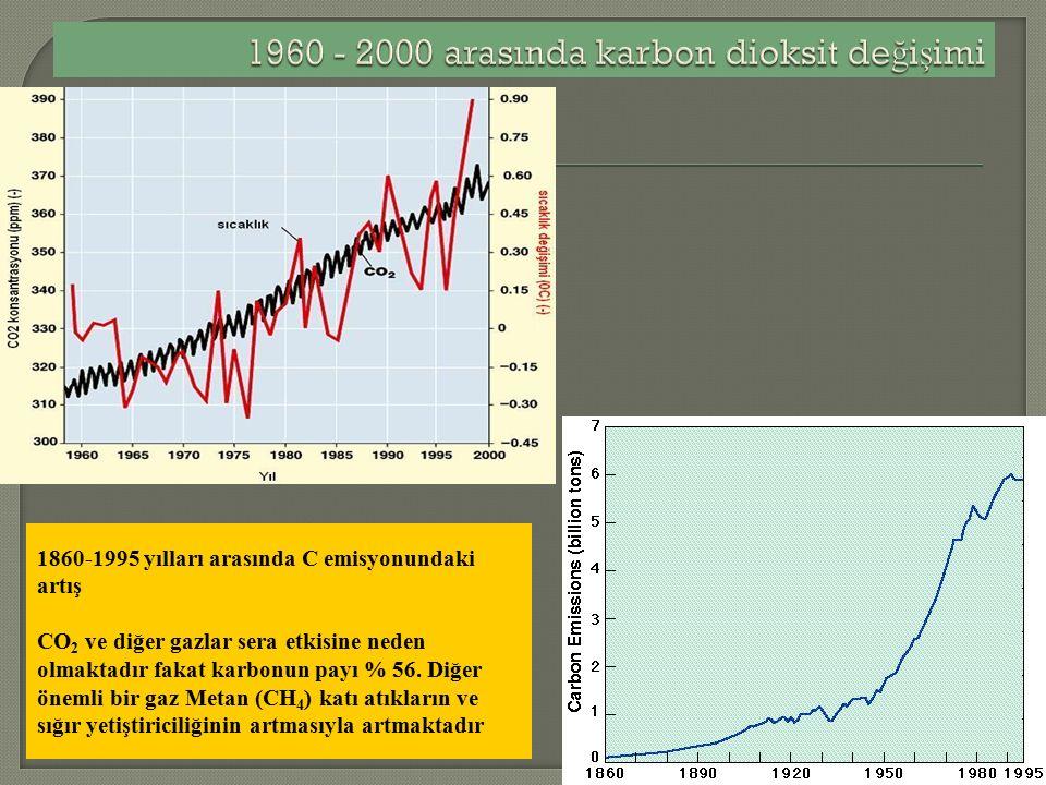 1860-1995 yılları arasında C emisyonundaki artış CO 2 ve diğer gazlar sera etkisine neden olmaktadır fakat karbonun payı % 56.