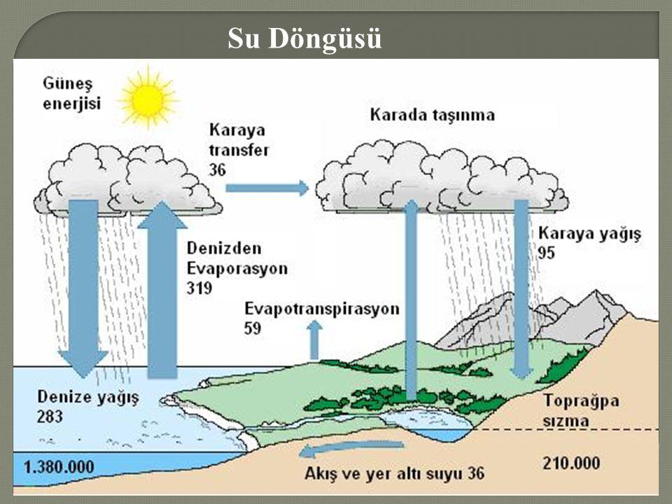 Su Döngüsü