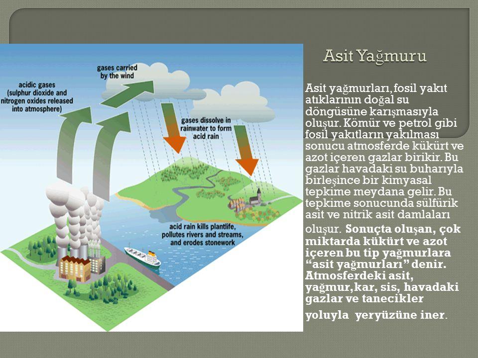 Asit ya ğ murları, fosil yakıt atıklarının do ğ al su döngüsüne karı ş masıyla olu ş ur.