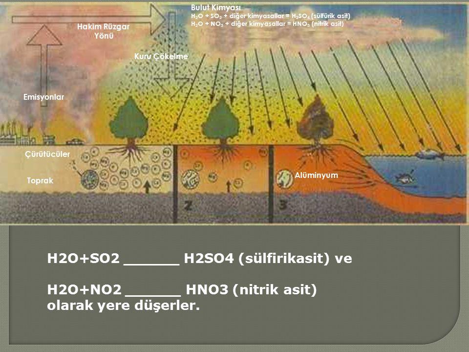 Hakim Rüzgar Yönü Emisyonlar Kuru Çökelme Çürütücüler Toprak Alüminyum Bulut Kimyası H 2 O + SO 2 + diğer kimyasallar = H 2 SO 4 (sülfürik asit) H 2 O + NO 3 + diğer kimyasallar = HNO 3 (nitrik asit ) H2O+SO2 ______ H2SO4 (sülfirikasit) ve H2O+NO2 ______ HNO3 (nitrik asit) olarak yere düşerler.