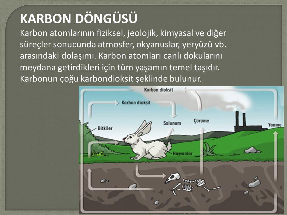 KARBON DÖNGÜSÜ Karbon atomlarının fiziksel, jeolojik, kimyasal ve diğer süreçler sonucunda atmosfer, okyanuslar, yeryüzü vb.