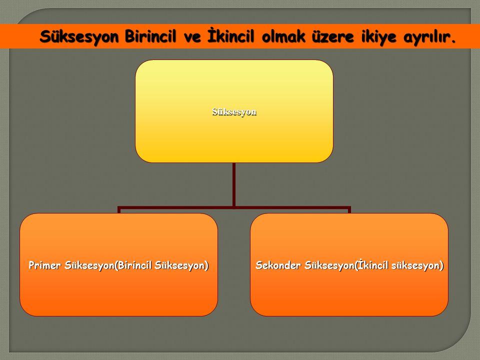 Süksesyon Primer S ü ksesyon(Birincil S ü ksesyon) Sekonder S ü ksesyon(İkincil s ü ksesyon) Süksesyon Birincil ve İkincil olmak üzere ikiye ayrılır.