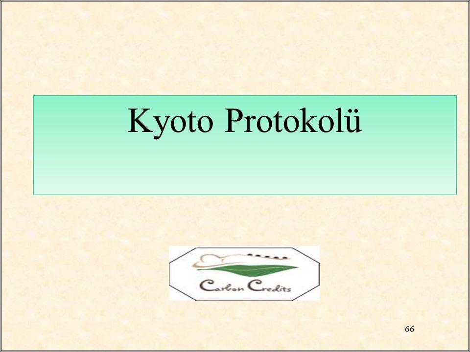 Kyoto Protokolü 66