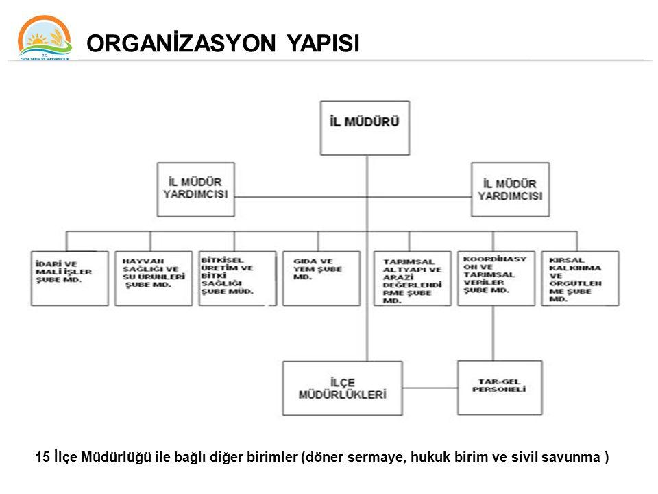 ORGANİZASYON YAPISI 15 İlçe Müdürlüğü ile bağlı diğer birimler (döner sermaye, hukuk birim ve sivil savunma )
