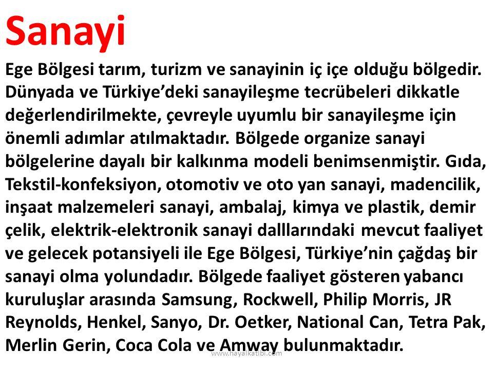 Sanayi Ege Bölgesi tarım, turizm ve sanayinin iç içe olduğu bölgedir. Dünyada ve Türkiye'deki sanayileşme tecrübeleri dikkatle değerlendirilmekte, çev