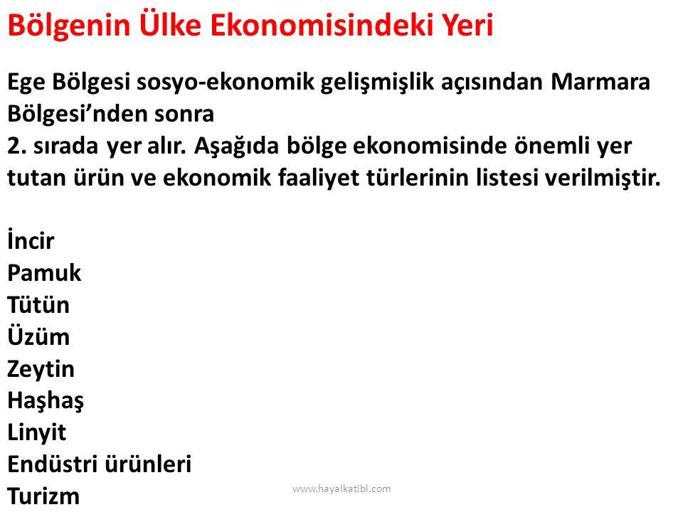Bölgenin Ülke Ekonomisindeki Yeri Ege Bölgesi sosyo-ekonomik gelişmişlik açısından Marmara Bölgesi'nden sonra 2. sırada yer alır. Aşağıda bölge ekonom
