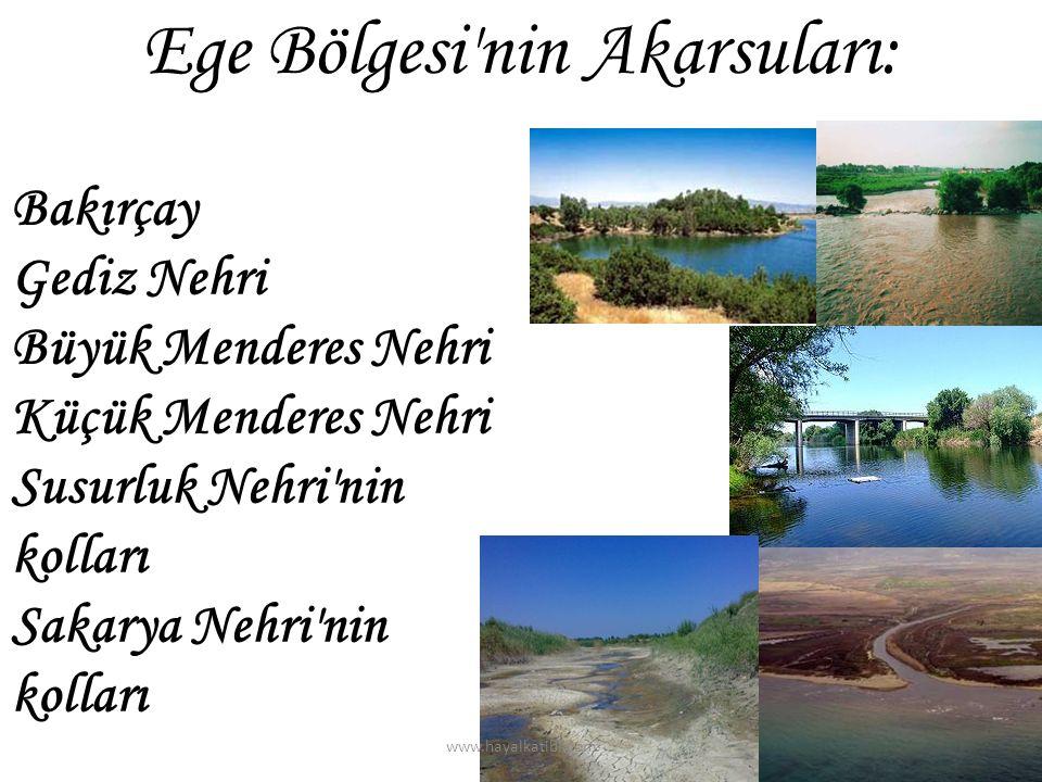 Bakırçay Gediz Nehri Büyük Menderes Nehri Küçük Menderes Nehri Susurluk Nehri'nin kolları Sakarya Nehri'nin kolları Ege Bölgesi'nin Akarsuları: www.ha