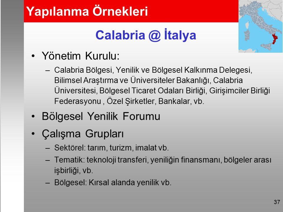 37 Yapılanma Örnekleri Yönetim Kurulu: –Calabria Bölgesi, Yenilik ve Bölgesel Kalkınma Delegesi, Bilimsel Araştırma ve Üniversiteler Bakanlığı, Calabria Üniversitesi, Bölgesel Ticaret Odaları Birliği, Girişimciler Birliği Federasyonu, Özel Şirketler, Bankalar, vb.