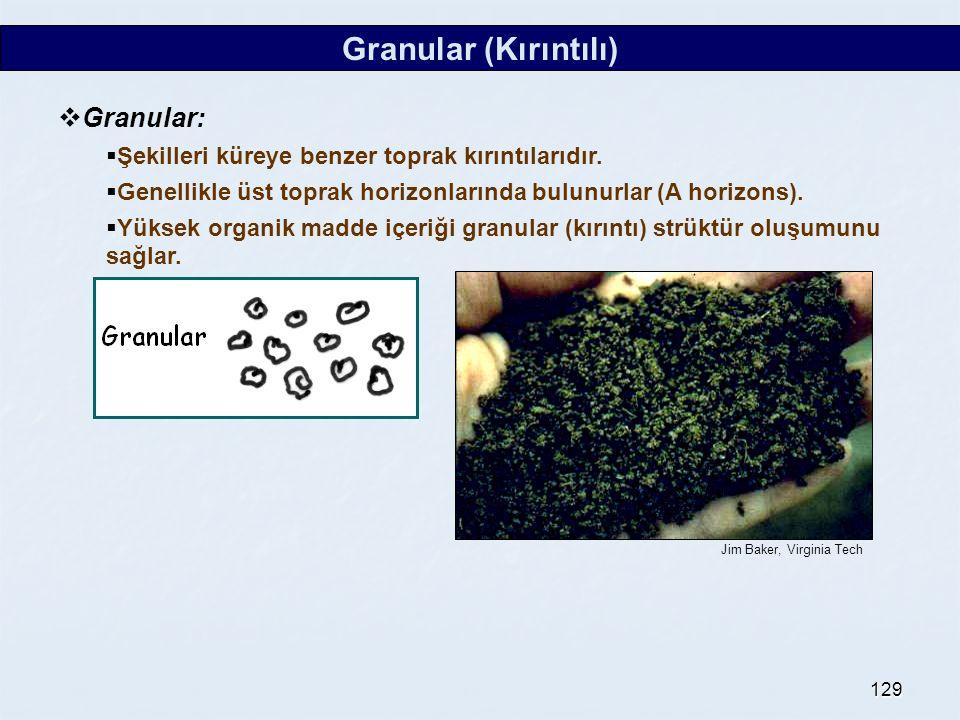 129 Granular (Kırıntılı)  Granular:  Şekilleri küreye benzer toprak kırıntılarıdır.  Genellikle üst toprak horizonlarında bulunurlar (A horizons).