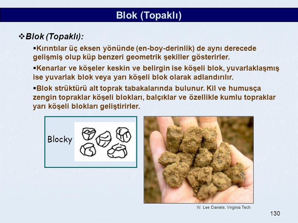 130 Blok (Topaklı)  Blok (Topaklı):  Kırıntılar üç eksen yönünde (en-boy-derinlik) de aynı derecede gelişmiş olup küp benzeri geometrik şekiller gös