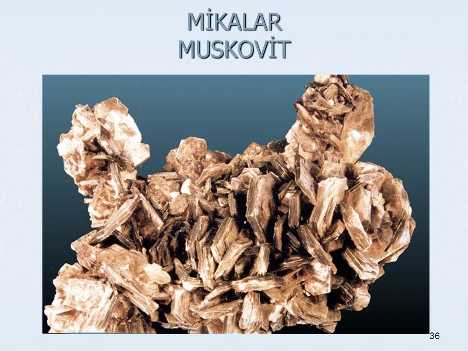 MİKALAR MUSKOVİT 36