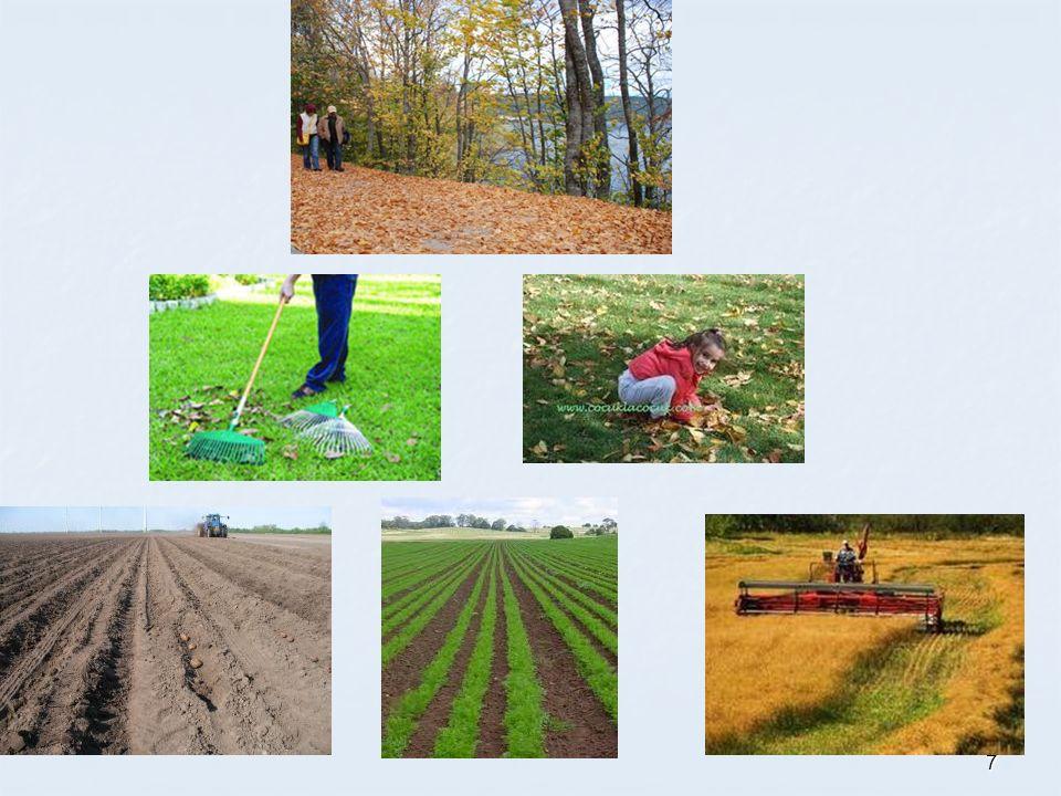 Toprak dersinde Kazanımlar Toprak ilmi ile ilgili temel kavramları tanımlar.