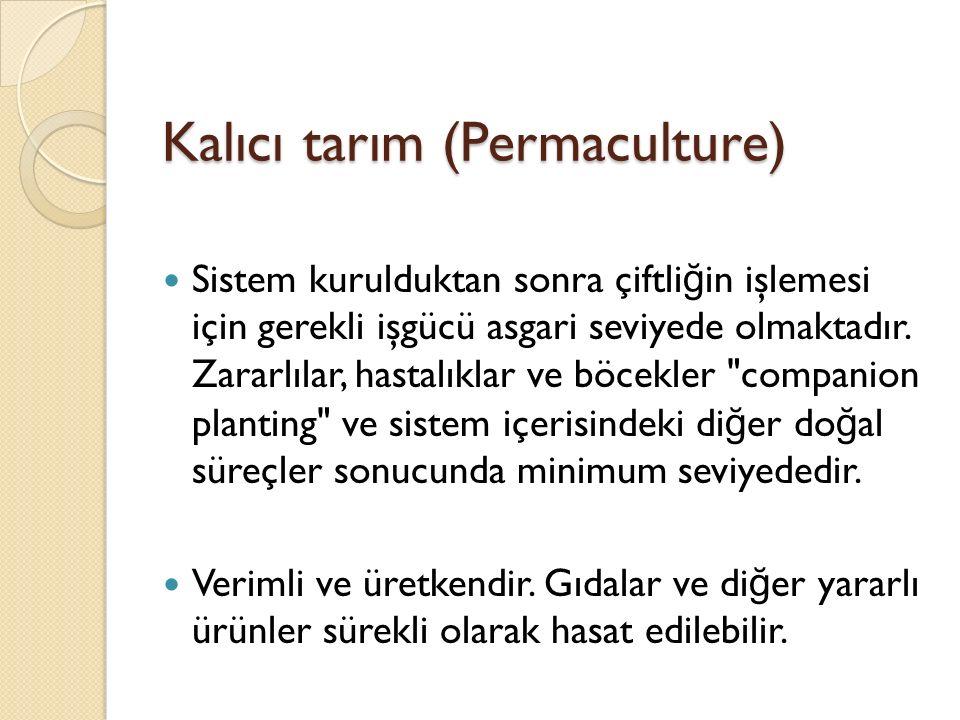 Kalıcı tarım (Permaculture) Sistem kurulduktan sonra çiftli ğ in işlemesi için gerekli işgücü asgari seviyede olmaktadır.
