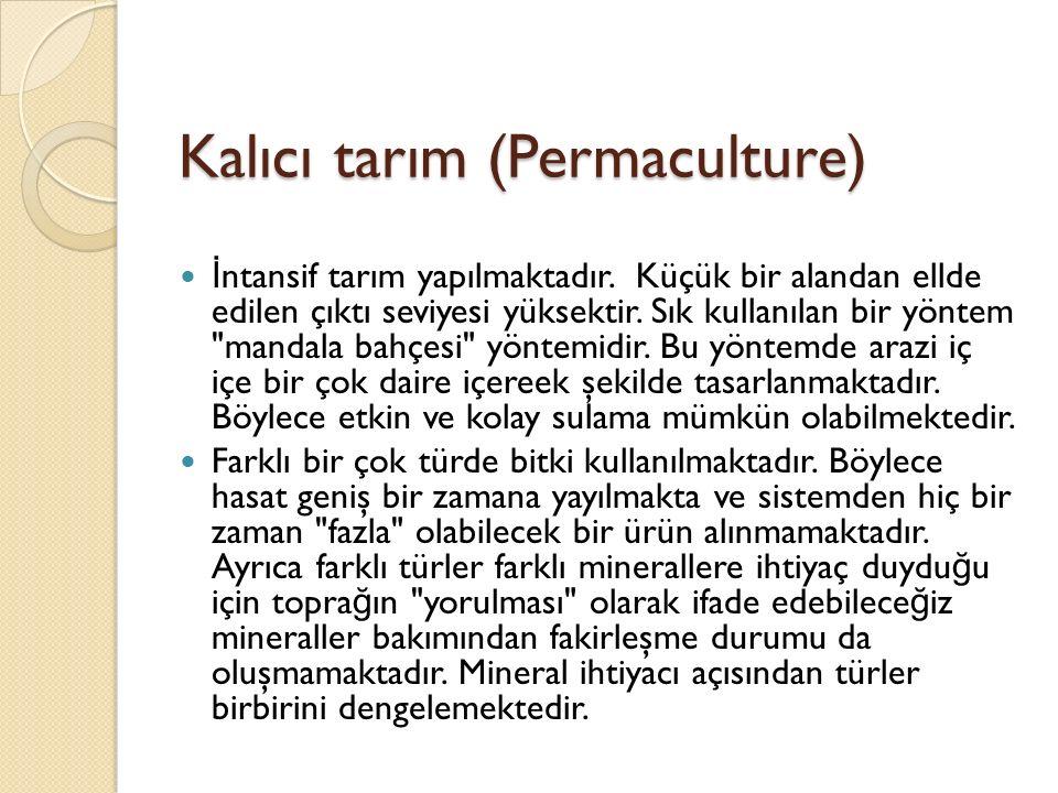Kalıcı tarım (Permaculture) İ ntansif tarım yapılmaktadır.