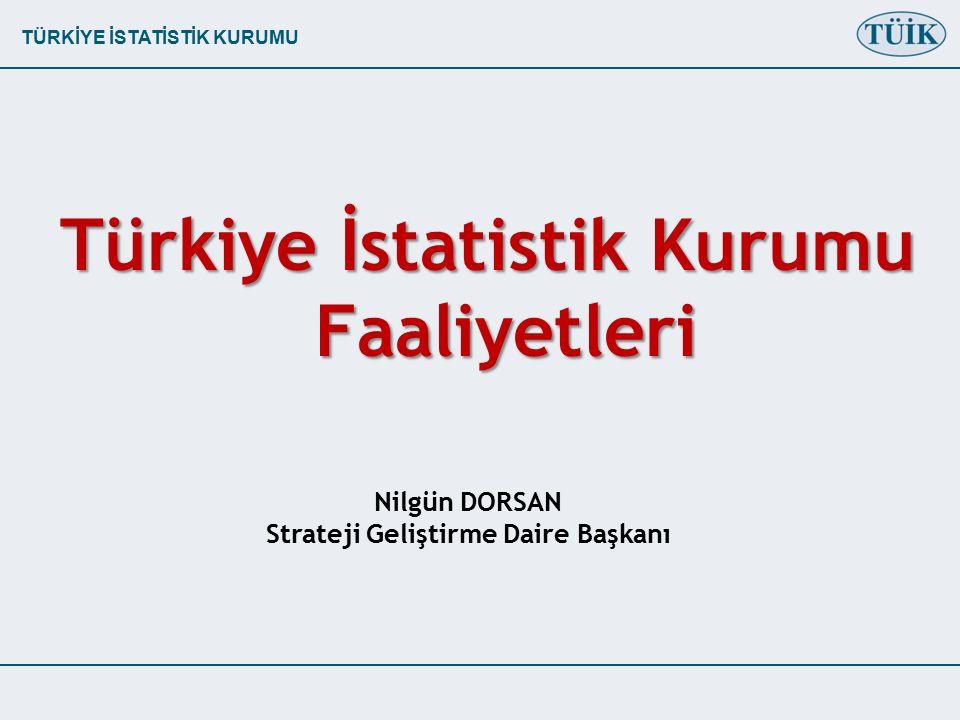 TÜRKİYE İSTATİSTİK KURUMU Türkiye İstatistik Kurumu Faaliyetleri Nilgün DORSAN Strateji Geliştirme Daire Başkanı
