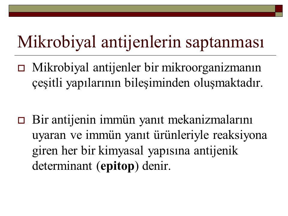 Mikrobiyal antijenlerin saptanması  Mikrobiyal antijenler bir mikroorganizmanın çeşitli yapılarının bileşiminden oluşmaktadır.  Bir antijenin immün