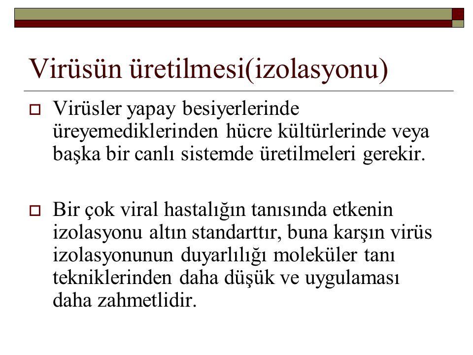 Viral inklüzyon cisimcikleri Hastalıkİsmiyerleşimi KuduzNegriİntrastoplazmik CMVBaykuş gözü (owl's eye)İntranükleer HSV, VZVCowdry Aİntranükleer Poks virüsGuarneriİntrastoplazmik asidofilik İntranükleer bazofilik AdenovirüsPerinükleer sitoplazmik, asidofilik Kızamıkİntrasitoplazmik ve intranükleer