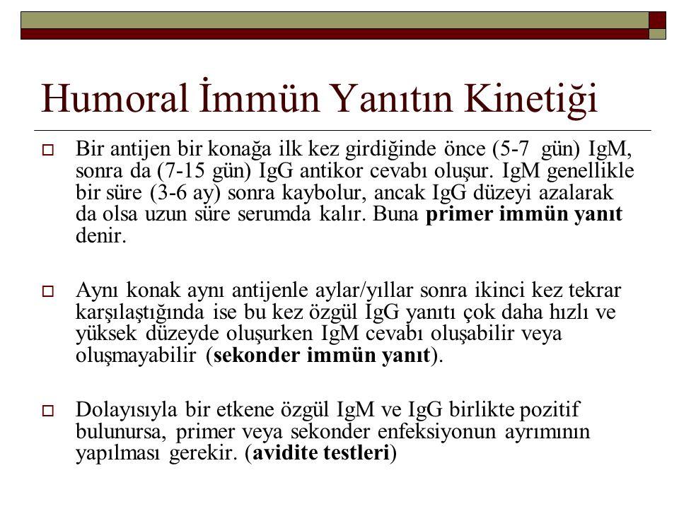 Humoral İmmün Yanıtın Kinetiği  Bir antijen bir konağa ilk kez girdiğinde önce (5-7 gün) IgM, sonra da (7-15 gün) IgG antikor cevabı oluşur. IgM gene