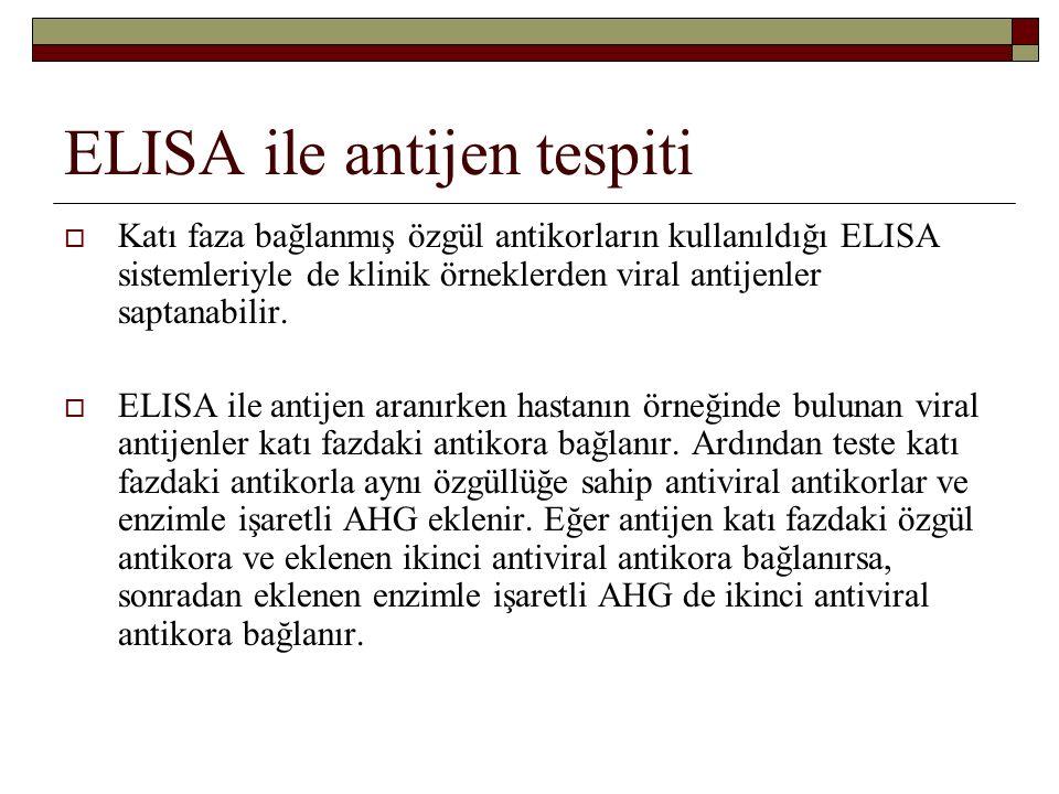 ELISA ile antijen tespiti  Katı faza bağlanmış özgül antikorların kullanıldığı ELISA sistemleriyle de klinik örneklerden viral antijenler saptanabilir.