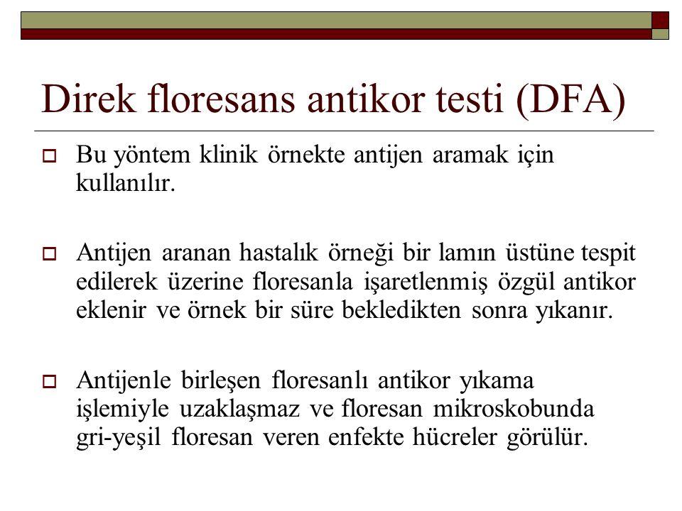Direk floresans antikor testi (DFA)  Bu yöntem klinik örnekte antijen aramak için kullanılır.  Antijen aranan hastalık örneği bir lamın üstüne tespi