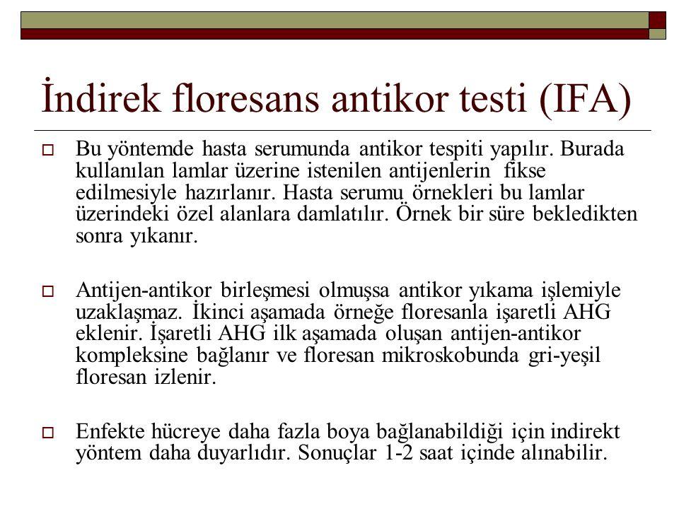 İndirek floresans antikor testi (IFA)  Bu yöntemde hasta serumunda antikor tespiti yapılır.