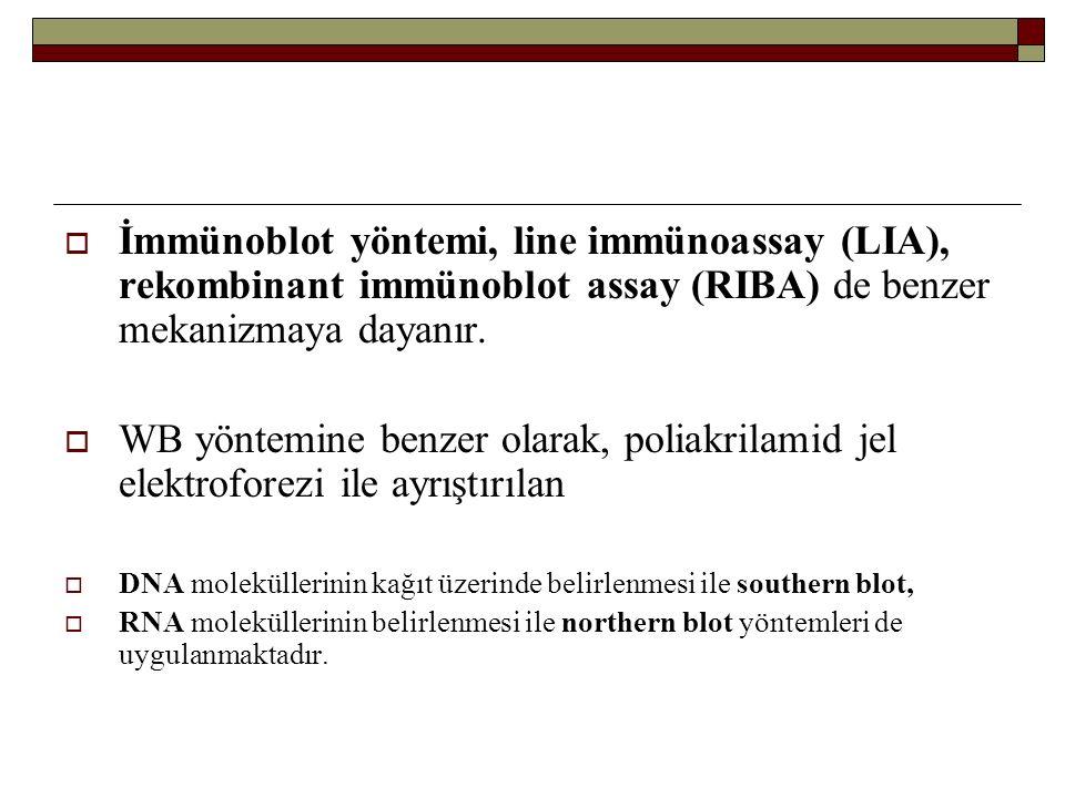  İmmünoblot yöntemi, line immünoassay (LIA), rekombinant immünoblot assay (RIBA) de benzer mekanizmaya dayanır.  WB yöntemine benzer olarak, poliakr