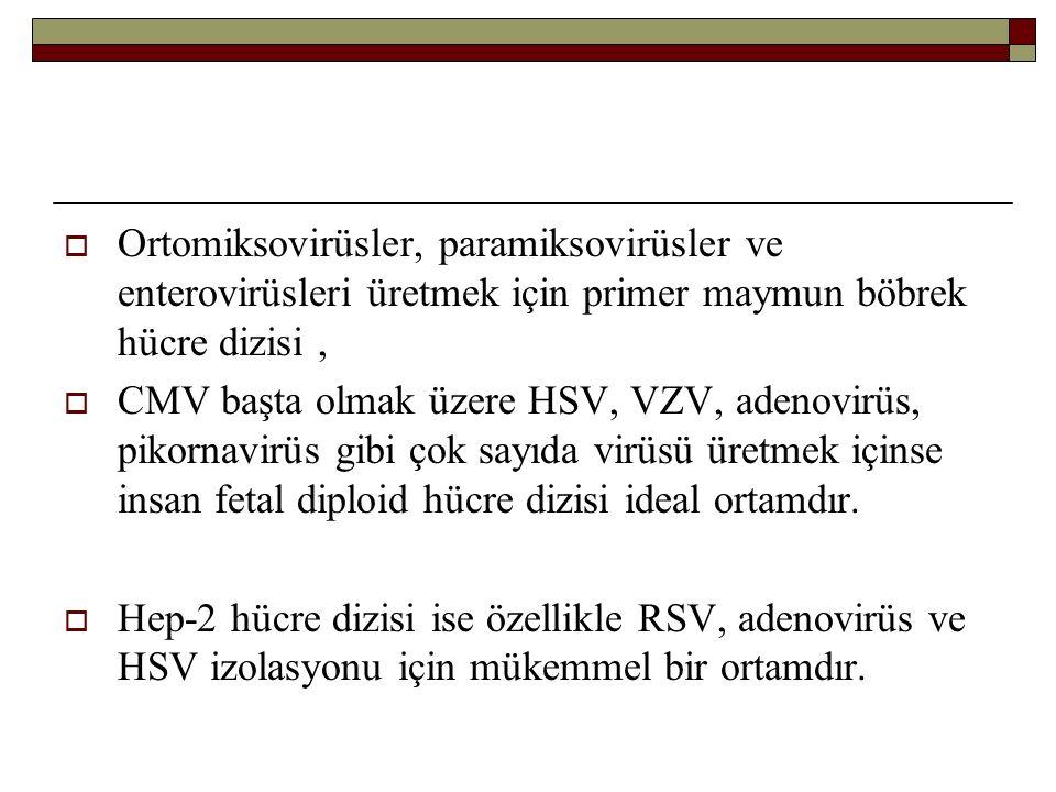  Ortomiksovirüsler, paramiksovirüsler ve enterovirüsleri üretmek için primer maymun böbrek hücre dizisi,  CMV başta olmak üzere HSV, VZV, adenovirüs, pikornavirüs gibi çok sayıda virüsü üretmek içinse insan fetal diploid hücre dizisi ideal ortamdır.