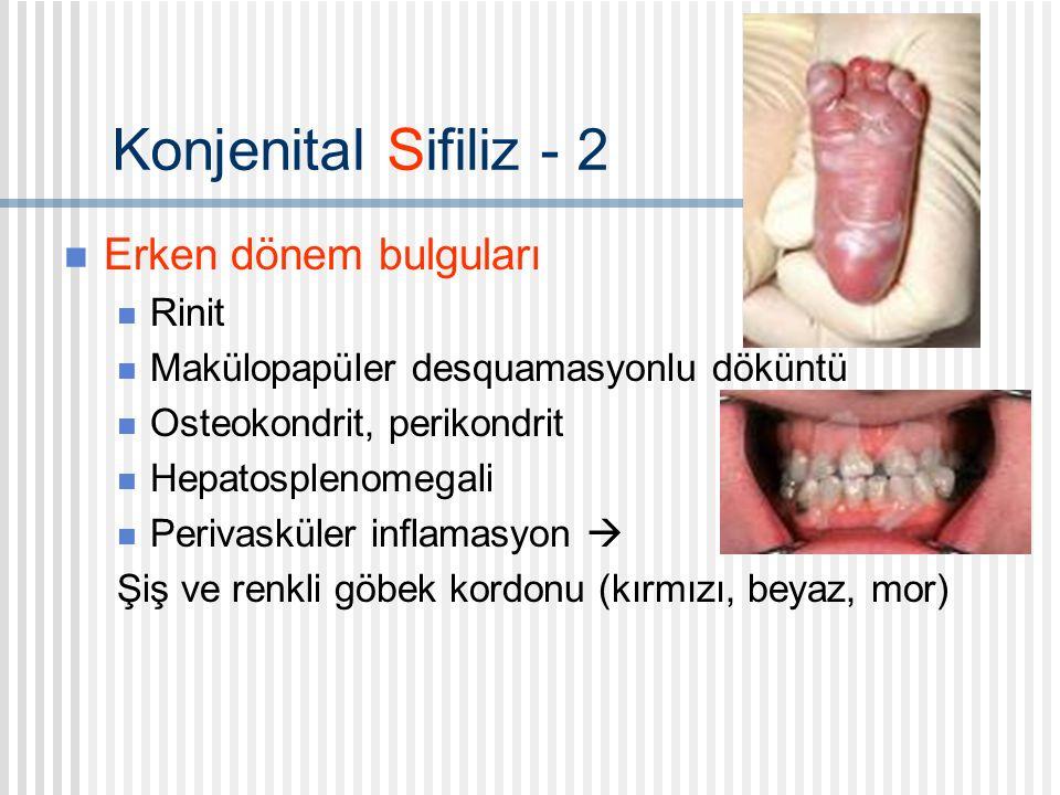 Konjenital Sifiliz - 2 Erken dönem bulguları Rinit Makülopapüler desquamasyonlu döküntü Osteokondrit, perikondrit Hepatosplenomegali Perivasküler inflamasyon  Şiş ve renkli göbek kordonu (kırmızı, beyaz, mor)