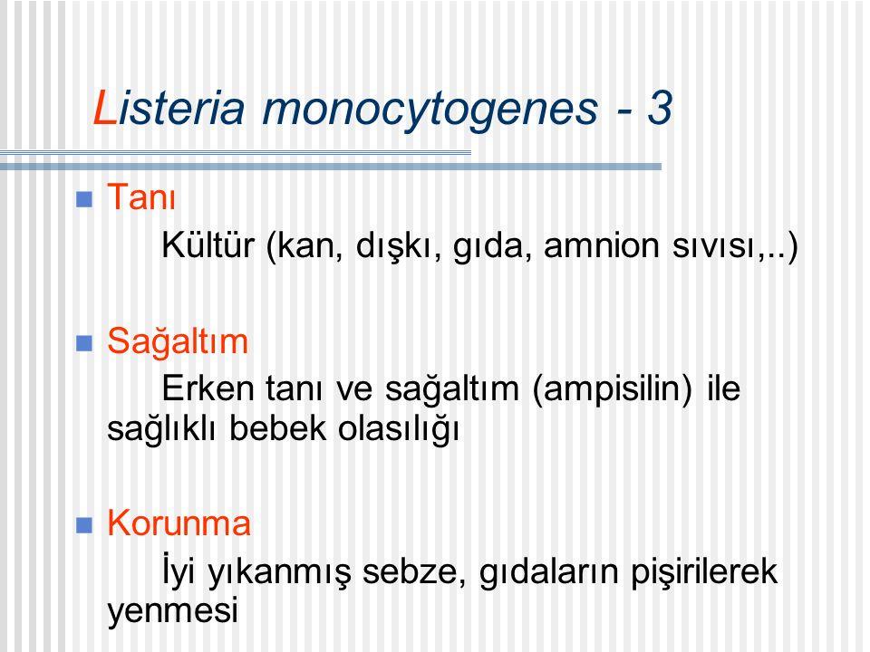 Listeria monocytogenes - 3 Tanı Kültür (kan, dışkı, gıda, amnion sıvısı,..) Sağaltım Erken tanı ve sağaltım (ampisilin) ile sağlıklı bebek olasılığı Korunma İyi yıkanmış sebze, gıdaların pişirilerek yenmesi