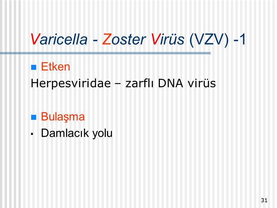 Varicella - Zoster Virüs (VZV) -1 Etken Herpesviridae – zarflı DNA virüs Bulaşma Damlacık yolu 31