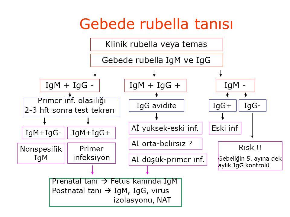 Gebede rubella tanısı Klinik rubella veya temas Gebede rubella IgM ve IgG IgM + IgG -IgM + IgG +IgM - Primer inf.