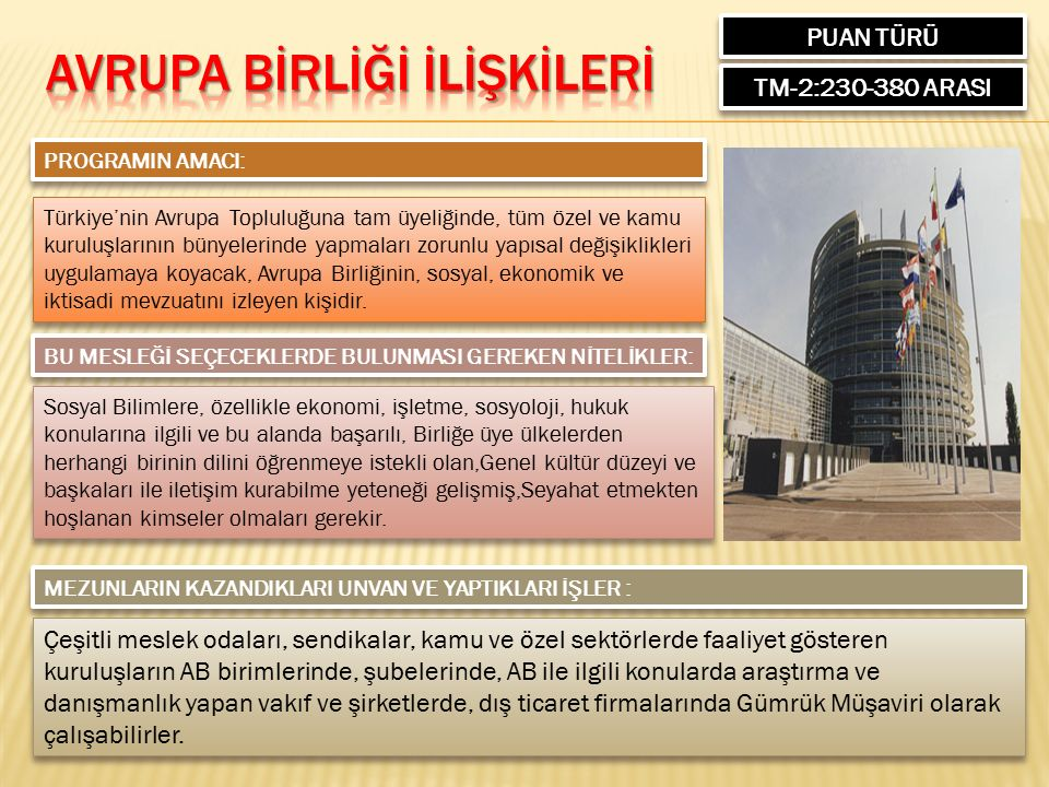 PUAN TÜRÜ TM-2:230-380 ARASI PROGRAMIN AMACI: Türkiye'nin Avrupa Topluluğuna tam üyeliğinde, tüm özel ve kamu kuruluşlarının bünyelerinde yapmaları zorunlu yapısal değişiklikleri uygulamaya koyacak, Avrupa Birliğinin, sosyal, ekonomik ve iktisadi mevzuatını izleyen kişidir.